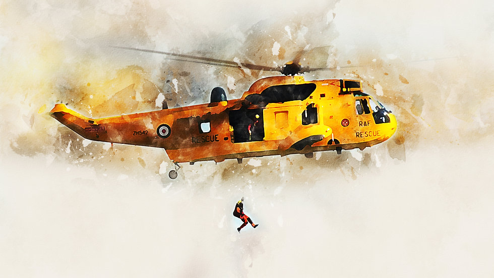 Print Products - Sea King