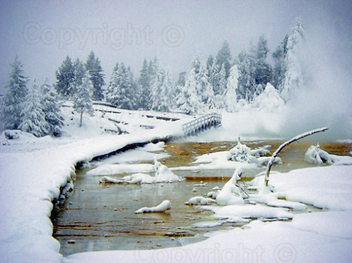 Winter Comes To Yellowstone