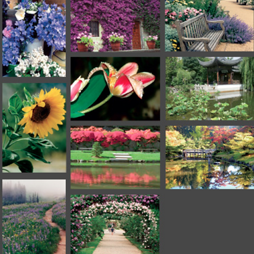 Gardens of Everyday Heaven Card Set