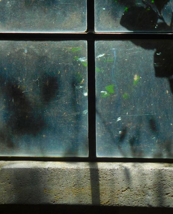 window quad.jpg
