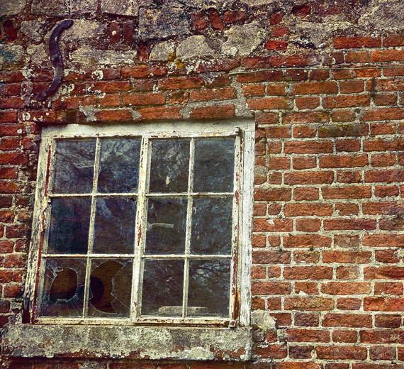 winnold window.jpg