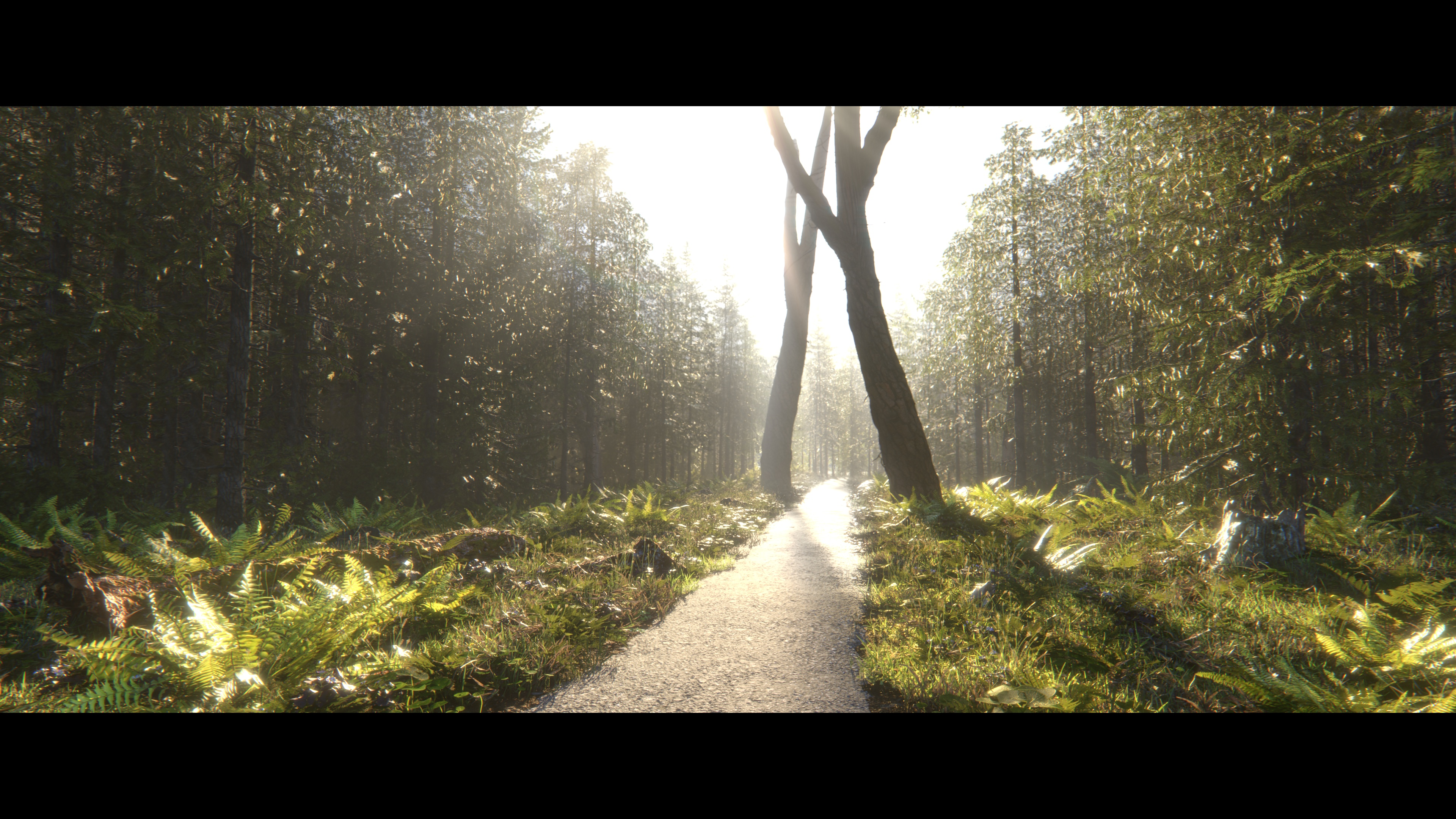 Instagram Forest (Personal project)