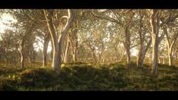 Australiana (Personal project)