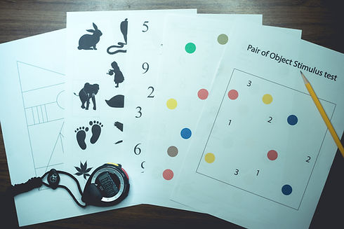 neurological test for cognitive function