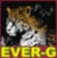 EVER-G ReverbNation