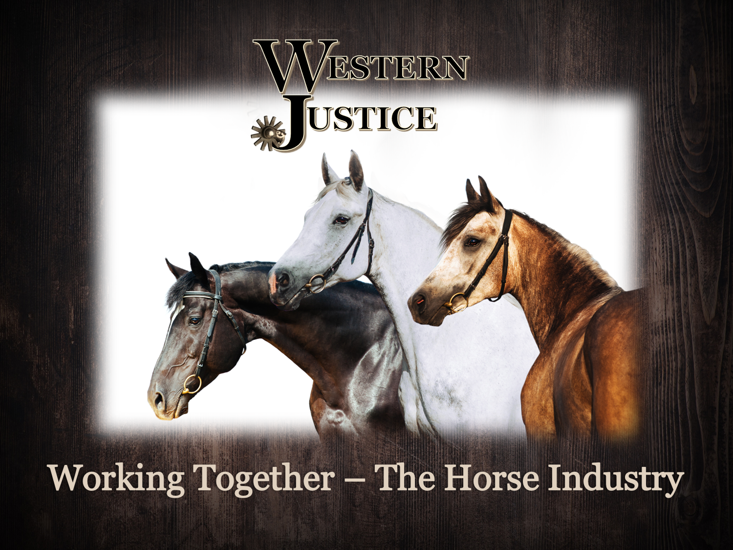 Working Together Horse Industry