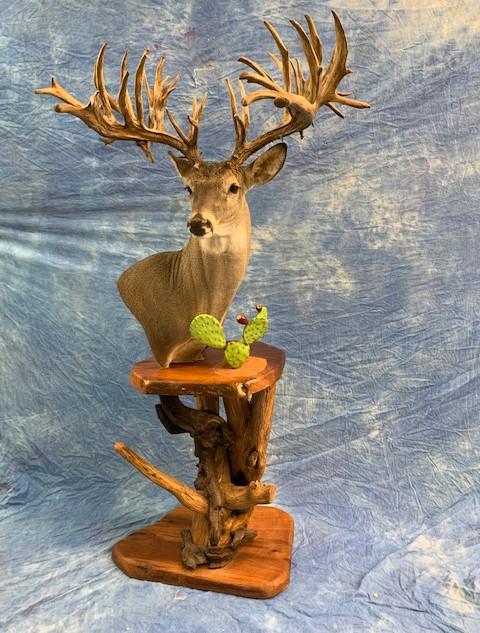 Full Pedistal Whitetail Deer