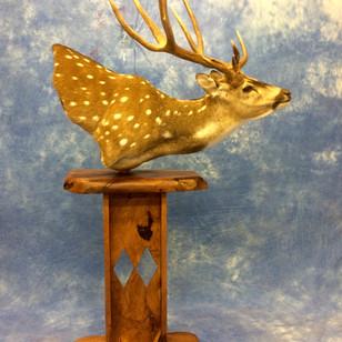 Axis  Deer Pedestal