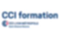 cci-formation-lyon-ste-roanne-2017_600.p