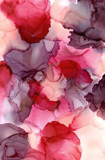 Rose - Fine Art Print