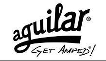 Aguilar Amps, bass lessons, bass unterricht tirol, play bass, learn bass