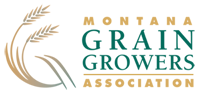 MGGA_logo (1).png