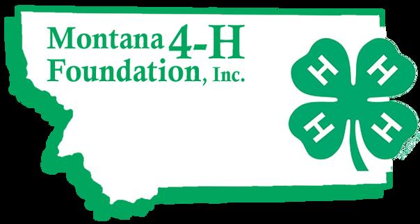 MT 4H Foundation (1).png