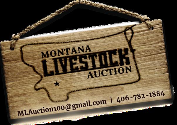 MT Livestock Auction (1).png