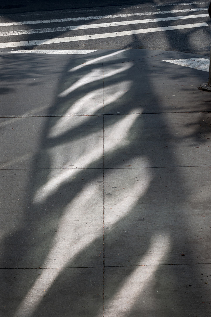 Street-Light, New York,  F633-9831
