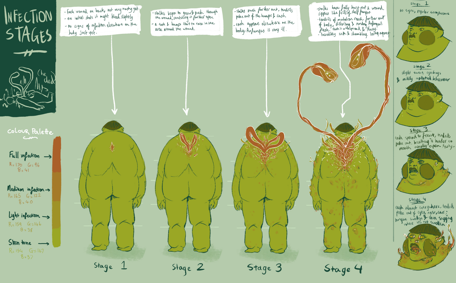 FRAGILE: infection stages
