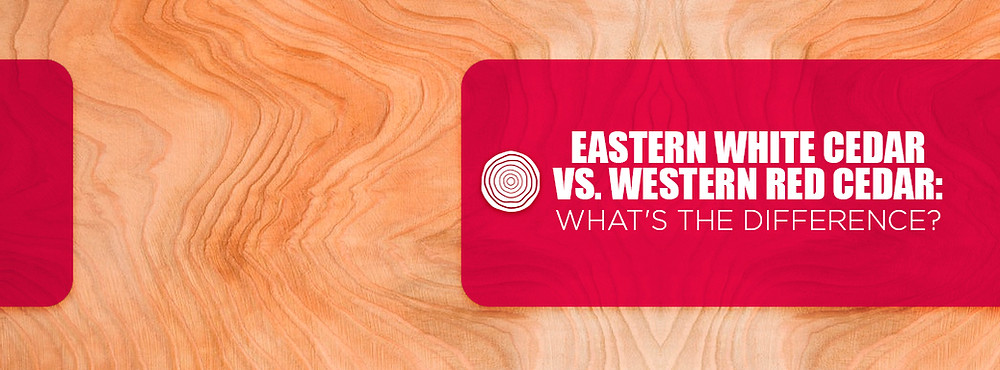 what's the difference between eastern white cedar and western red cedar?