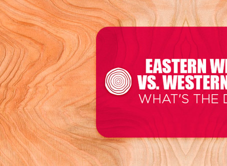 Eastern White Cedar vs. Western Red Cedar: What's The Difference?