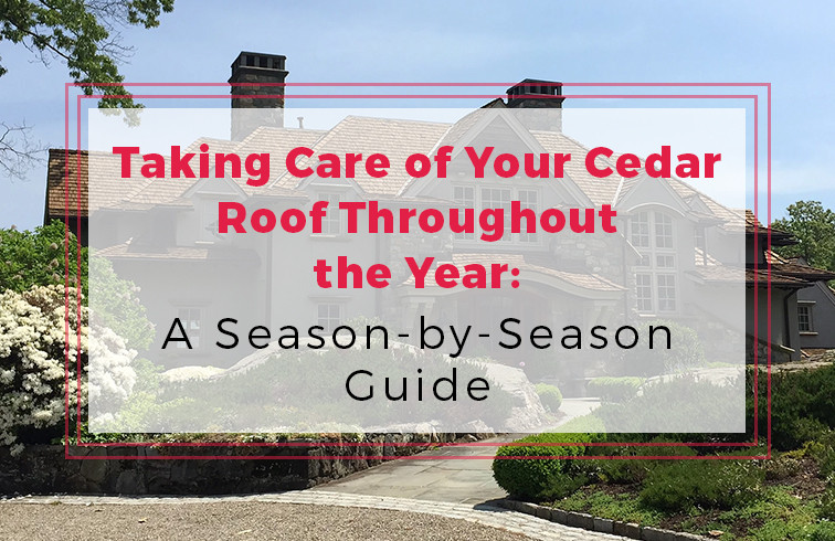 Cedar Roof Maintenance Guide