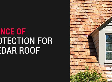 Importance of Sun Protection for Your Cedar Roof
