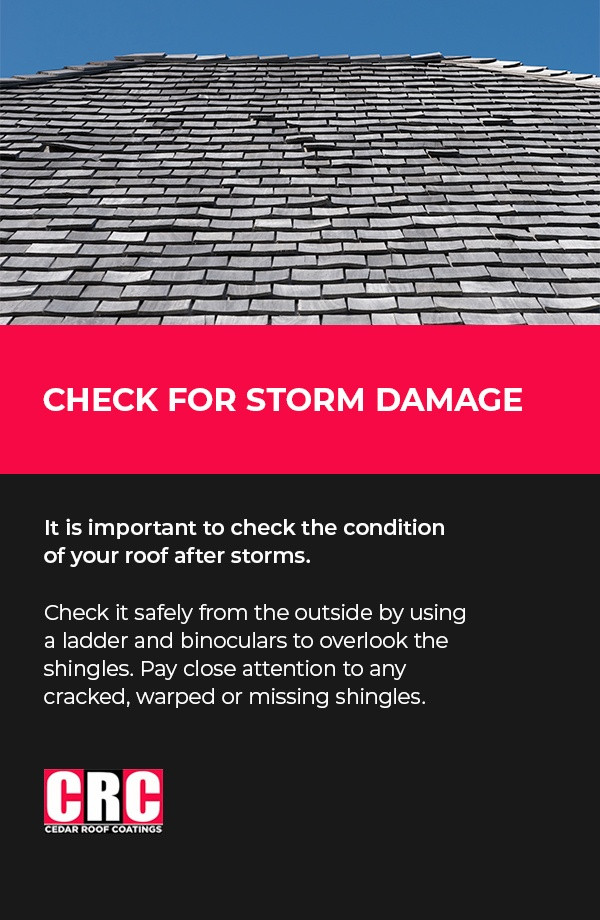 Check for storm damage