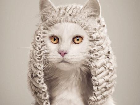 La Déclaration Universelle des Droits de l'Animal