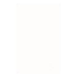 John Keells Holdings.png