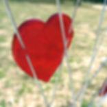 heart reflector.jpg
