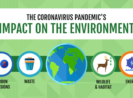 The Environmental Consequences of COVID-19