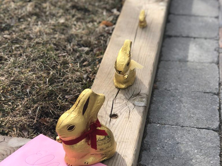We made a home for our LINDT GOLD BUNNY
