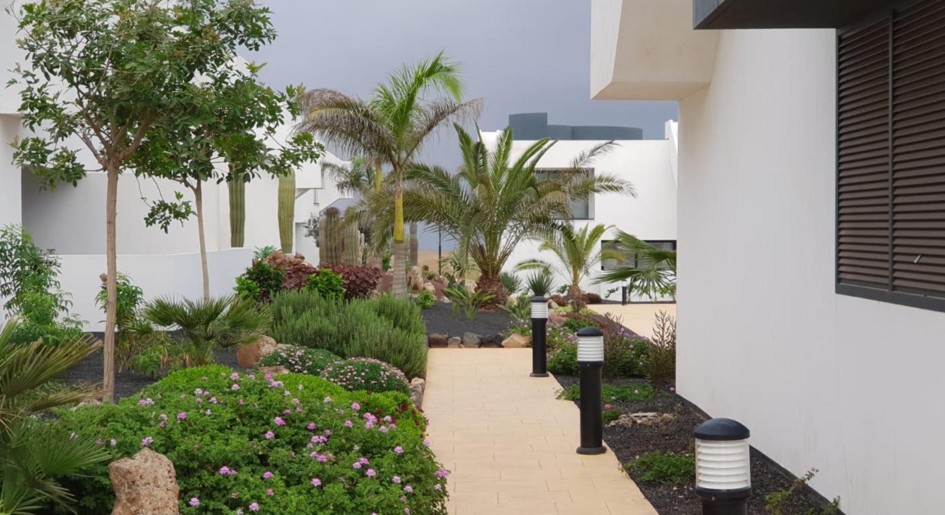 Costa Ancor