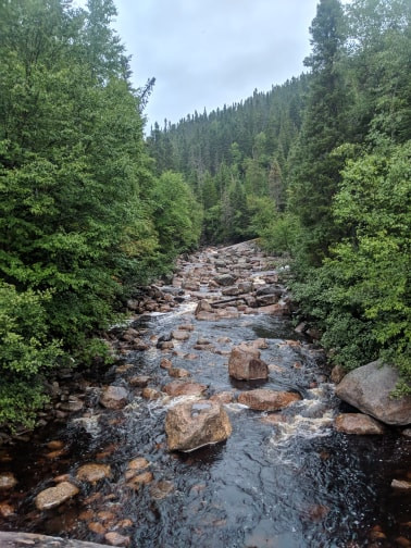 Backcountry Brook