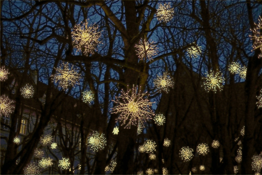 Christmas Holiday Lights Installation - Contact LIGHTSCAPES by SPARK Creative Group, Santa Barbara CA, 805-456-1231