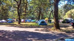 Summer Tenting