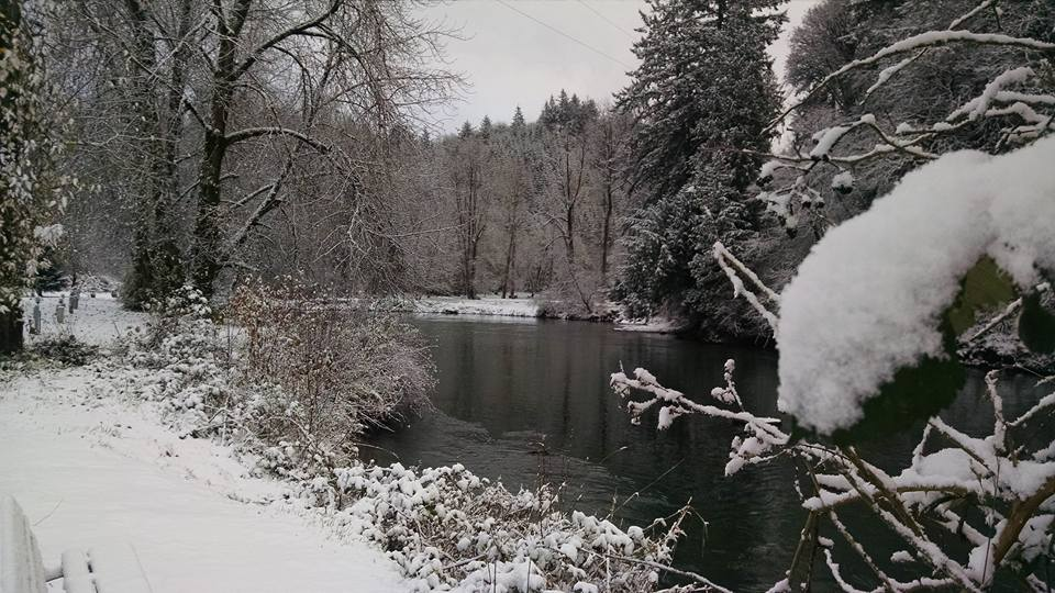 River in Snow