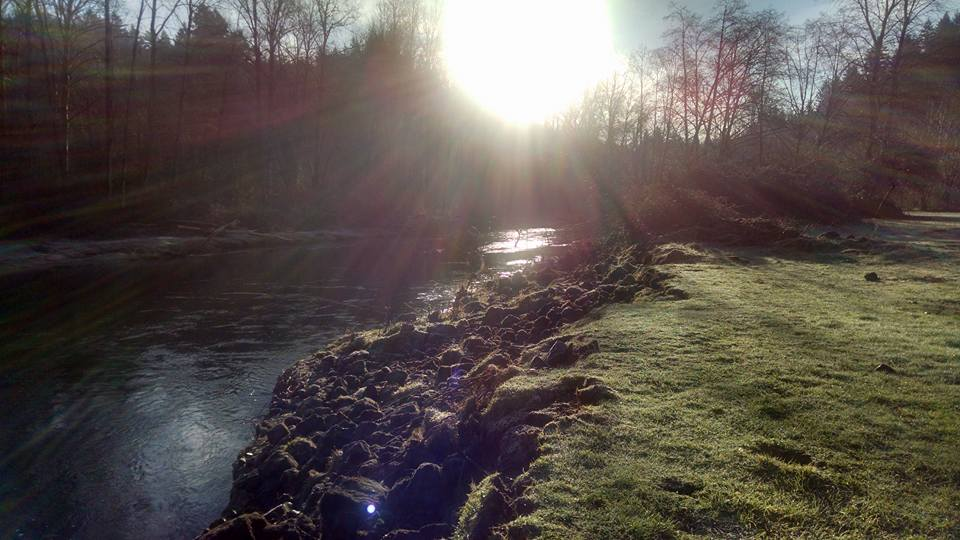 River in the Sun