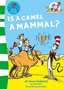 Camel Book.jpg