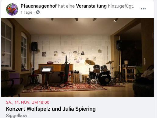 Konzert Julia und Wolfspelz