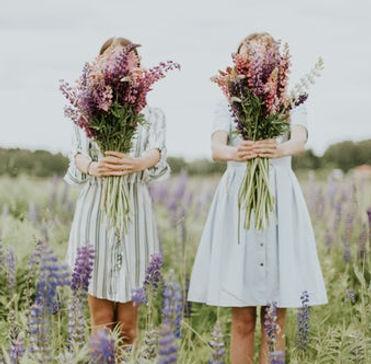 lavender 4.jpeg