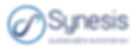 Synesis Logo