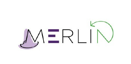 MERLIN: unique solution to increase the quality and rate of recycled multi-layer packaging waste