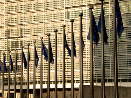 Strict Deadlines for SUP Directive Implementation Cause Negative Consequences for EU Single Market