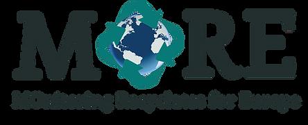 MORE Logo_transparent.png