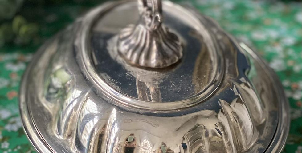 Legumbrera inglesa, baño de plata