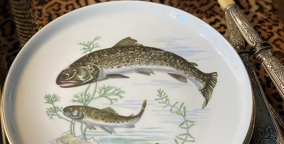 Colección de 8 platos , porcelana alemana , 18 cm