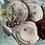 Thumbnail: 8 platos franceses entrante  , principio de siglo