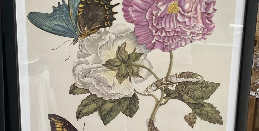 Lámina enmarcada flores 35 x30