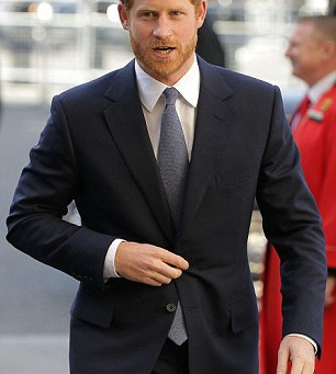 Prince Harry wins official leadership role in a bid to attract younger people to Commonwealth