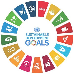 Africa Regional Forum on Sustainable Development
