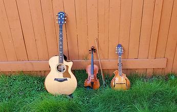 Adams Instruments.jpg